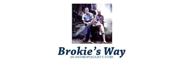 Read Brokie's Way online